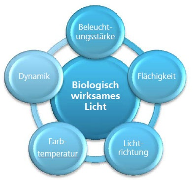 Diagramm Biologisch wirksames Licht